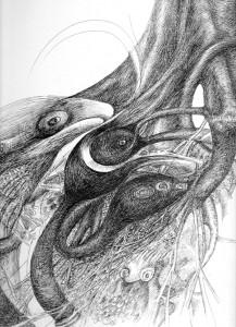 whale, pen & ink Seana Mcnamara